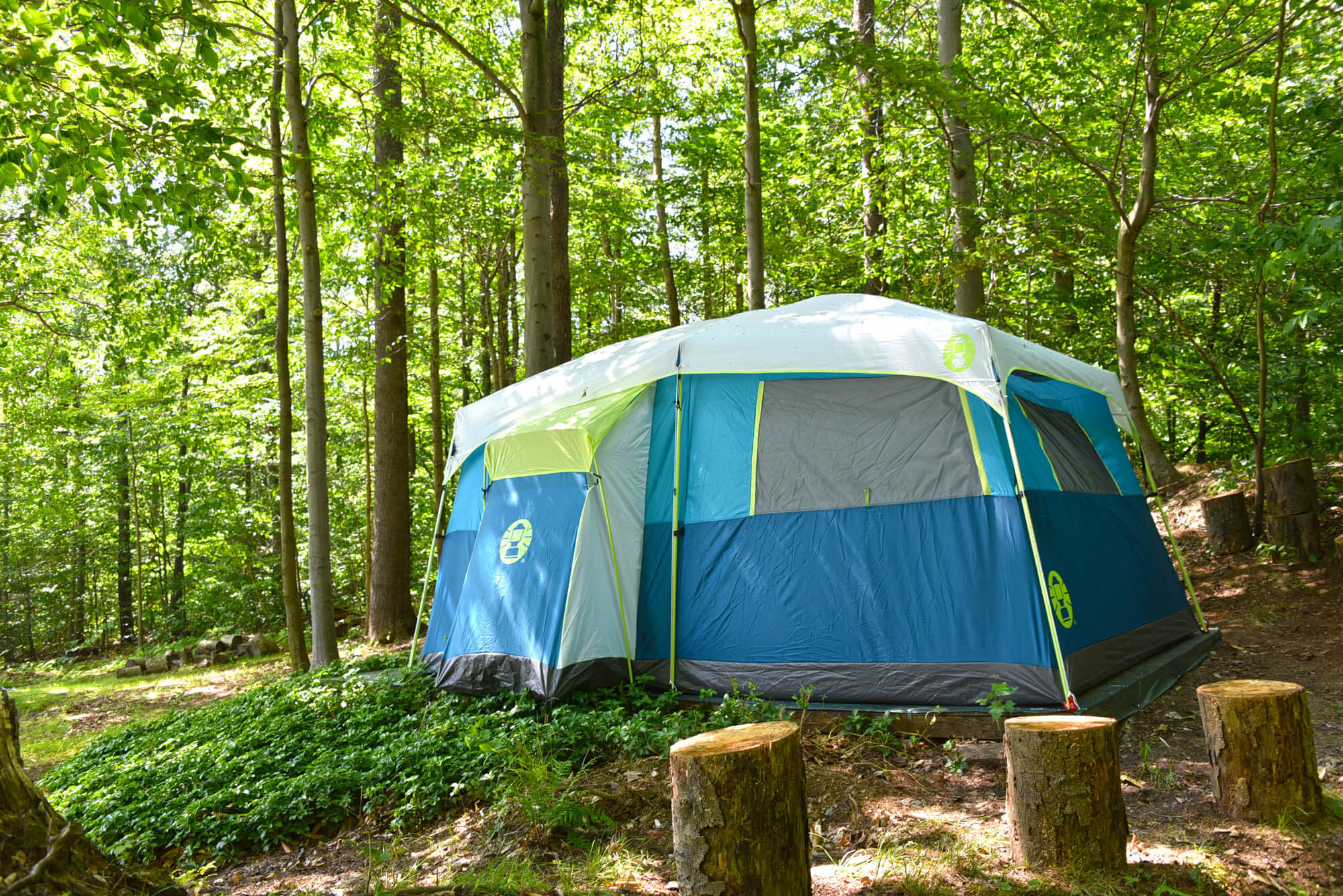 Tent Sites & Tent Campgrounds | Beautiful u0026 Serene Tent Camping | Allegany ...